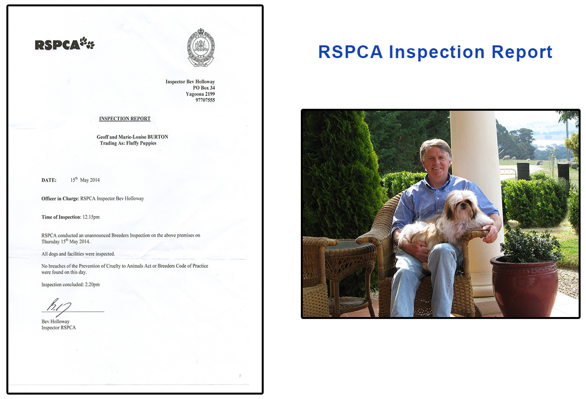 RSPCA Inspection Report - Fluffy Puppies